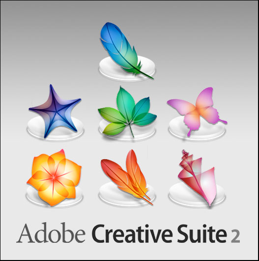 what is adobe suite