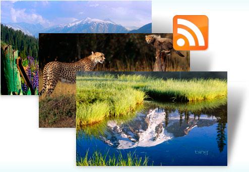05-01 มาใช้ Bing Dynamic Theme สำหรับ Windows 7 เพื่อเปลี่ยนรูปบนหน้าจอให้สวยอยู่เสมอ