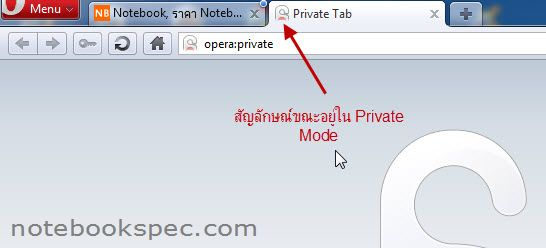 private_mode_10