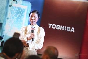 Toshiba Satellite 2012 91