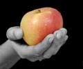 ผลสำรวจตลาดแท็บเล็ต Apple โตไม่ยั้ง ยี่ห้ออื่นก็โตตาม ยกเว้น Acer