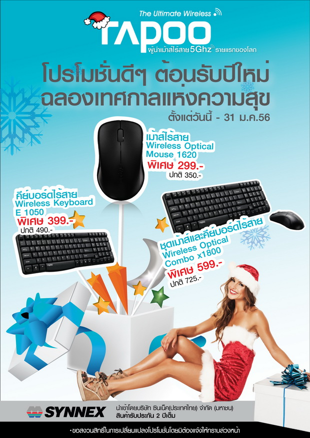 Rapoo New Year Promotion