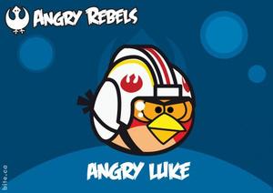 Rovio เปิดตัว Angry Birds Star Wars ใน Facebook เป็นที่เรียบร้อยแล้ว