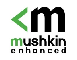 Mushkin เปิดตัว SSD การเชื่อมต่อ mSATA กับความจุ 480GB รุ่นแรกของโลก