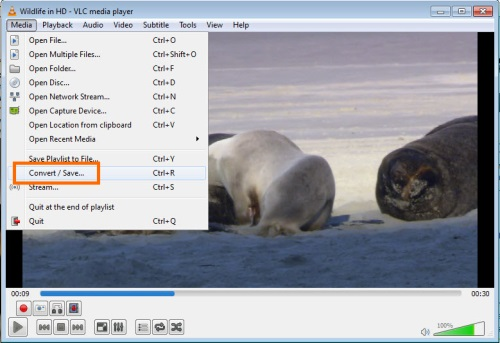 VLC Convert file 2