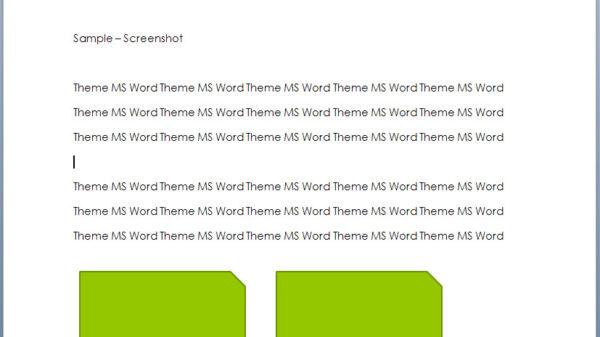 MS Word Screenshot 1