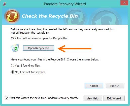 Panda-Recovery-4
