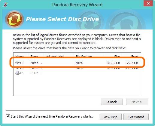 Panda-Recovery-5
