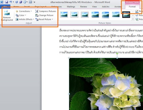 EditPicture_2