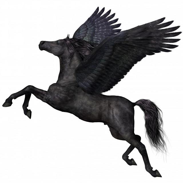 Pegasus 600