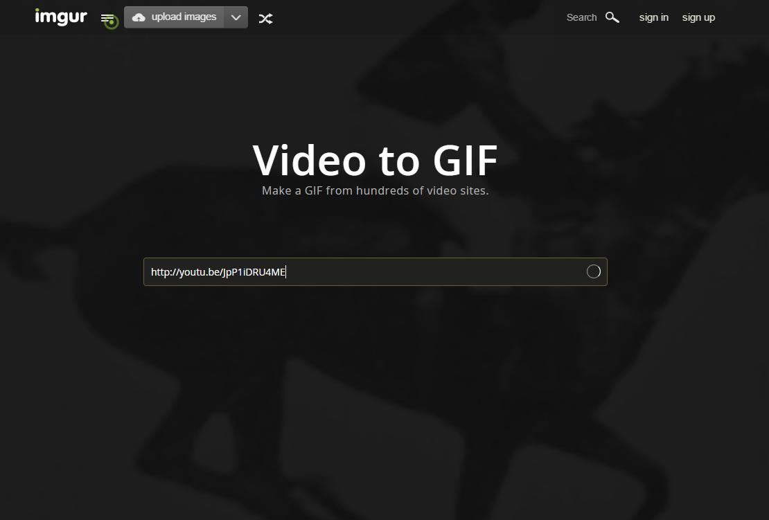 gif (2)