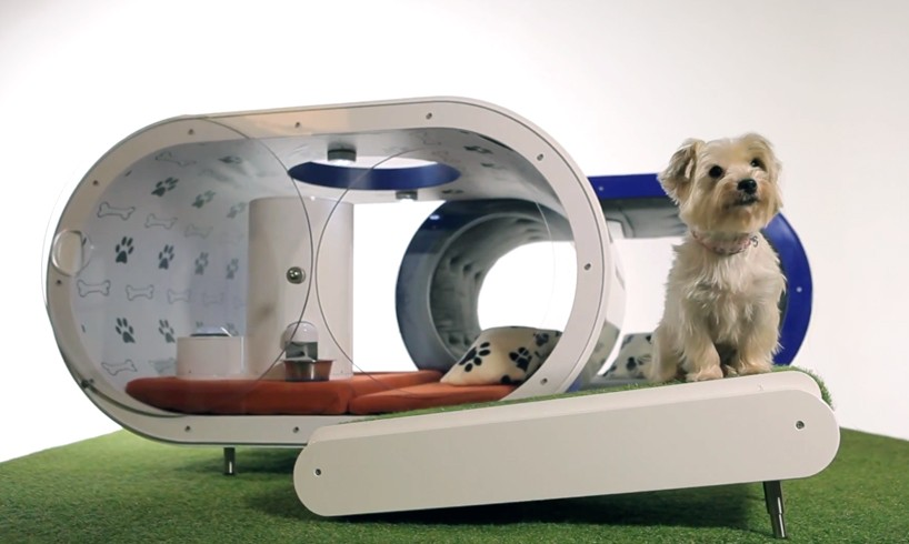 samsung-dream-doghouse-designboom01-818x490