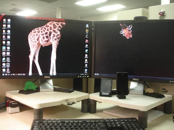 epic-desktop-griaffe