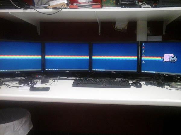epic-desktop-nyan-four-monitors
