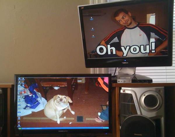 epic-desktop-oh-you-meme