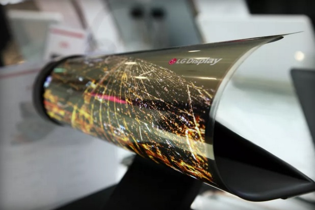 LG OLED 18-inch display roll up 600