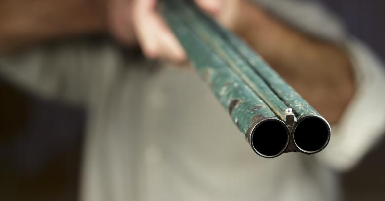 gunpoint 600