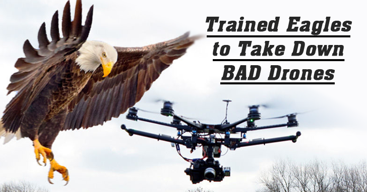 police-eagle-drone-hunting