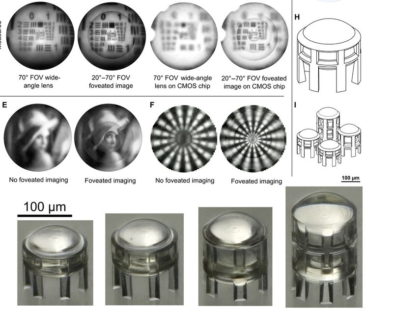 Tiny 3D-printed lenses 600 02