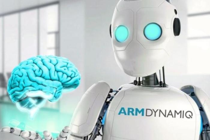 ARM dynamiq 600 01