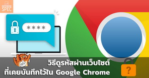 Google Chrome Check Password