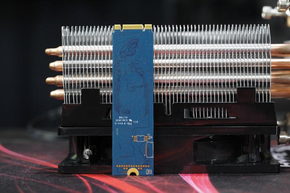 Kingston A1000 SSD 8