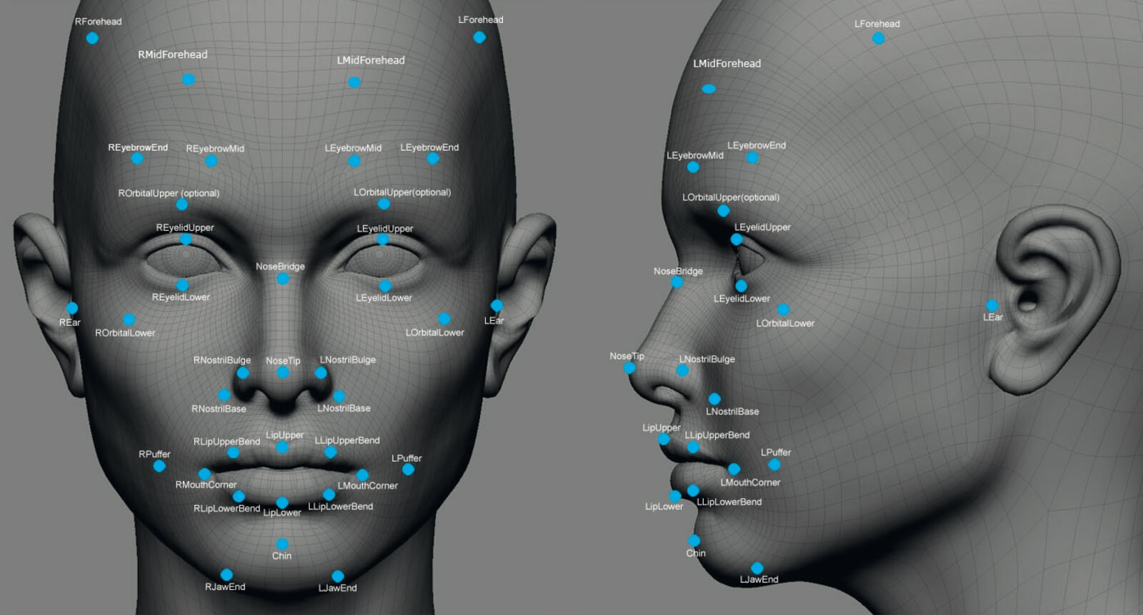 3d modelling map facial recognition points