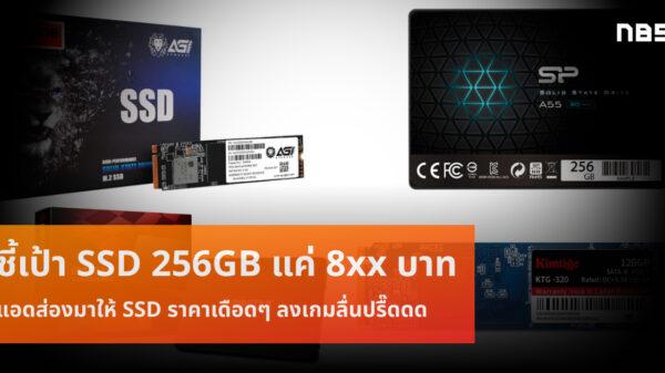 SSD 256GB 8xx cov