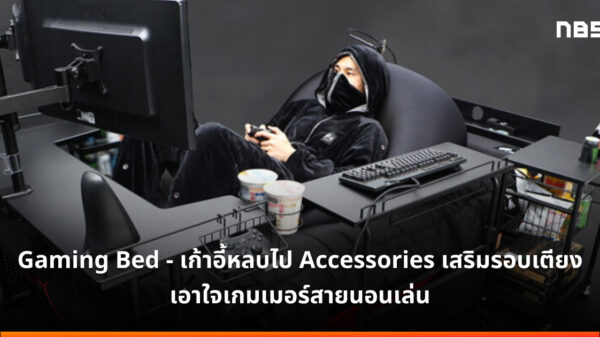 Gaming bed accessories cov