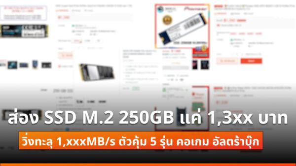 SSD M2 250GB 13xx cov