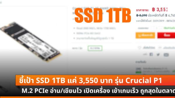 Crucial SSD P1 1TB cov