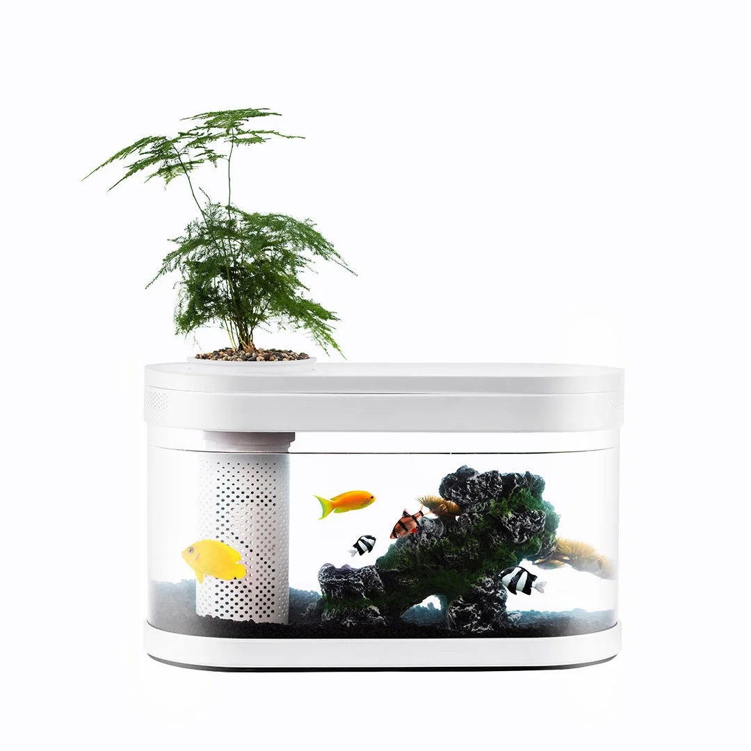 Xiaomi Geometry Fish Tank Aquaponics Ecosystem 9