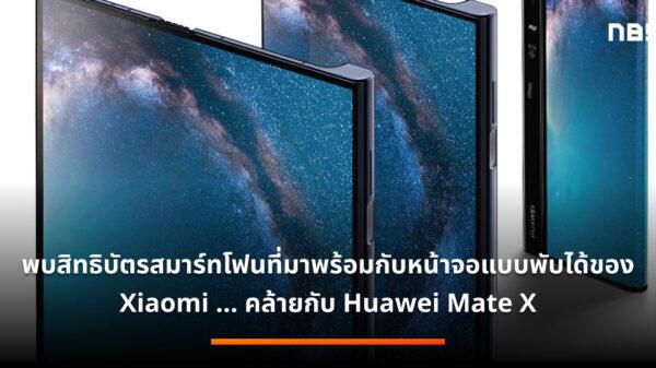 Mate X handset
