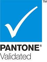 P Validated logo FINAL