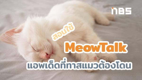 meowtalk2