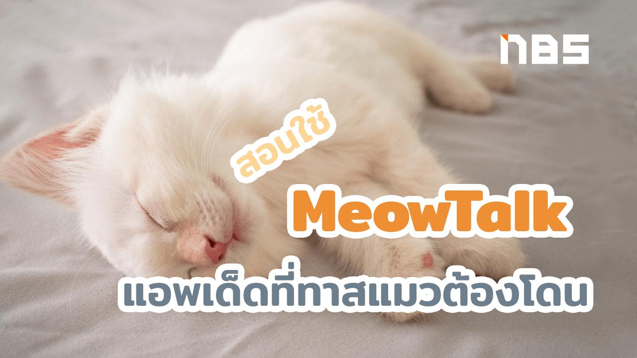 แอพแปลภาษาแมว
